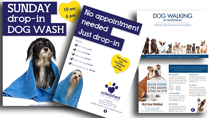 Flyer design – it's a dogs life!